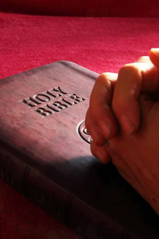 belief bible book business