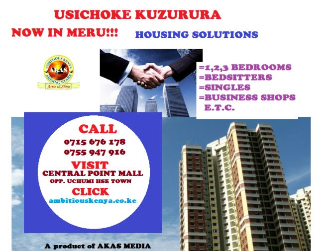 Housing Solutions. Meru..png